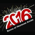 Bonne annee2016-450
